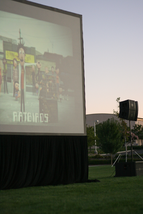 Movie in the Park 12